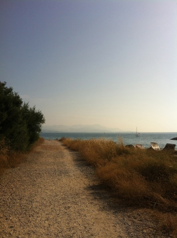 Sunday's 10km run