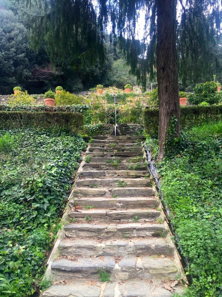 Jardins del viver de Can borni