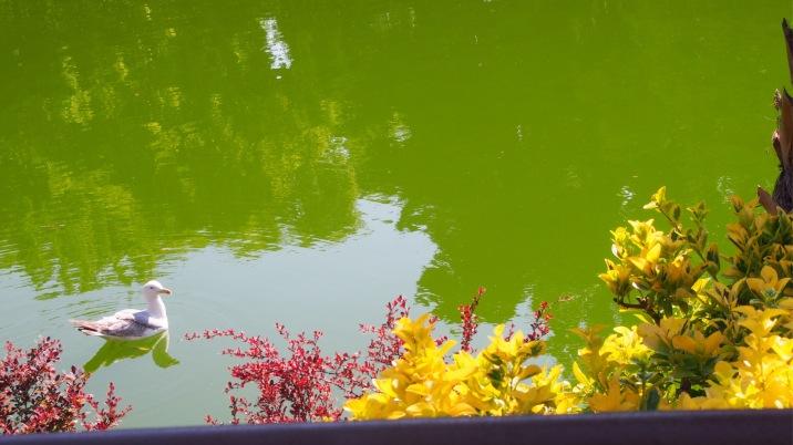 Boating Lake, Parc Ciutadella, Barcelona