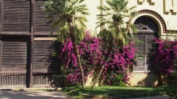 L'Umbracle, Parc Ciutadella