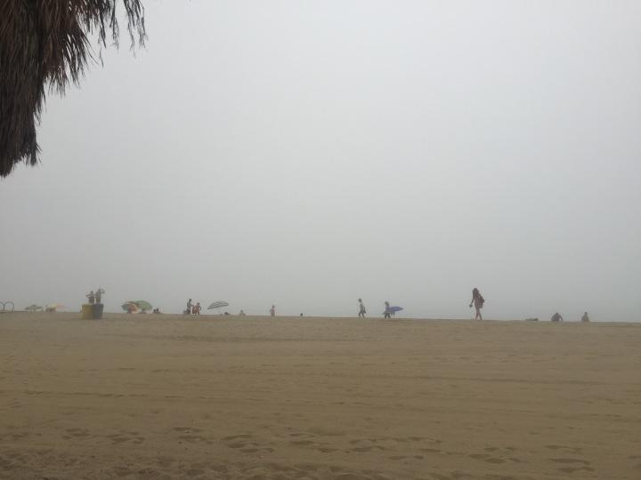 Foggy beach run