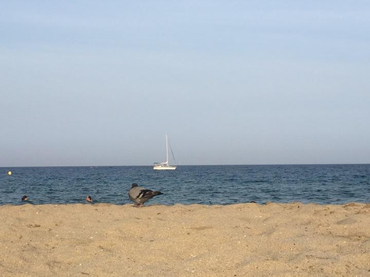 Nearly prime real estate beach spot.