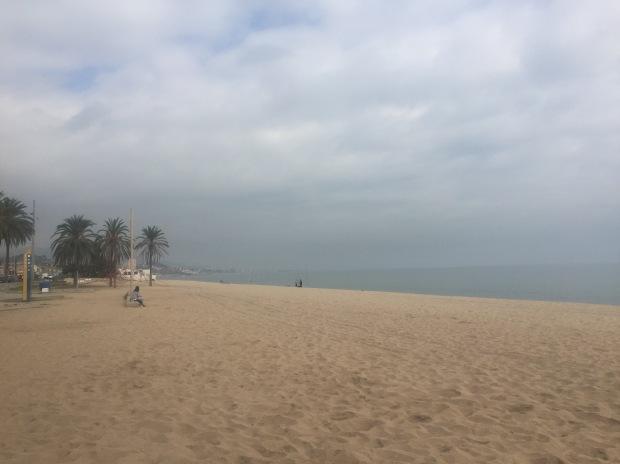 12km run view
