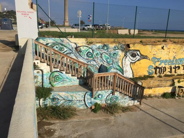 Peacock beach graffiti