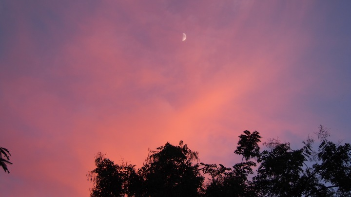 Moon and Pink Clouds