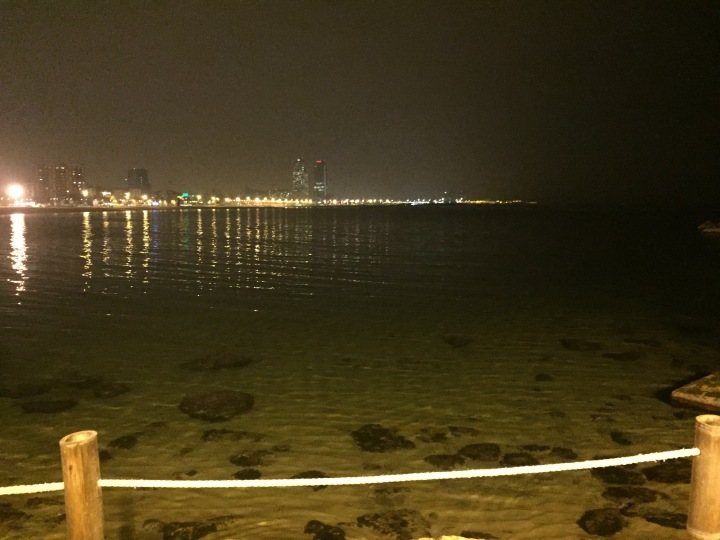 Night view W Barcelona