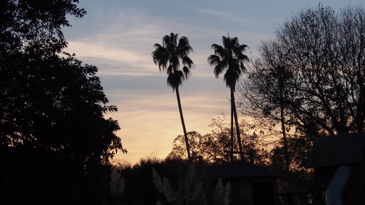Sunset Barcelona Zoo