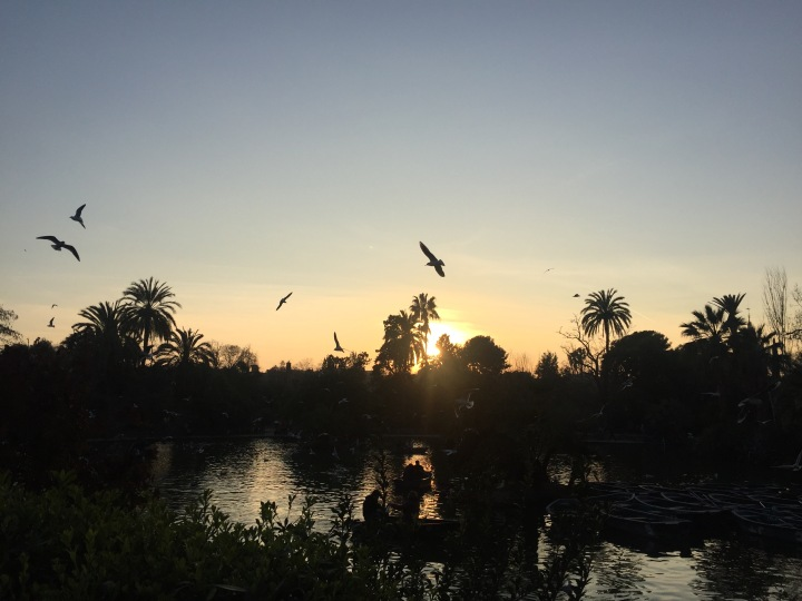 Sunset Parc Ciutadella