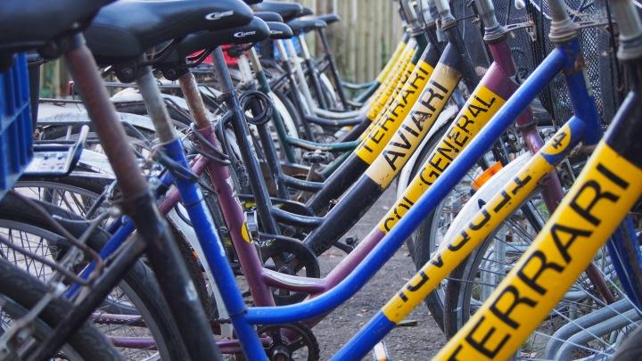 Zoo keeper bikes Barcelona Zoo