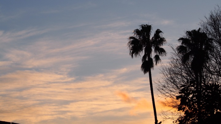 Winter sunset from Barcelona Zoo