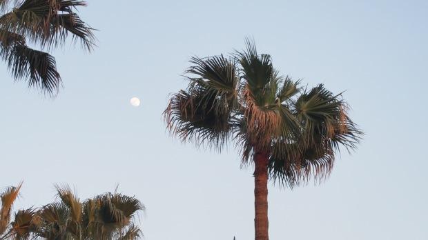 3 days until full moon Feb 2016