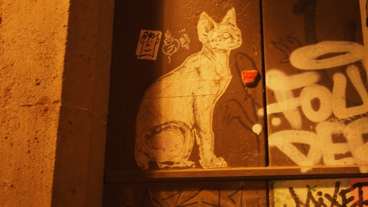 Stencil cat graffiti