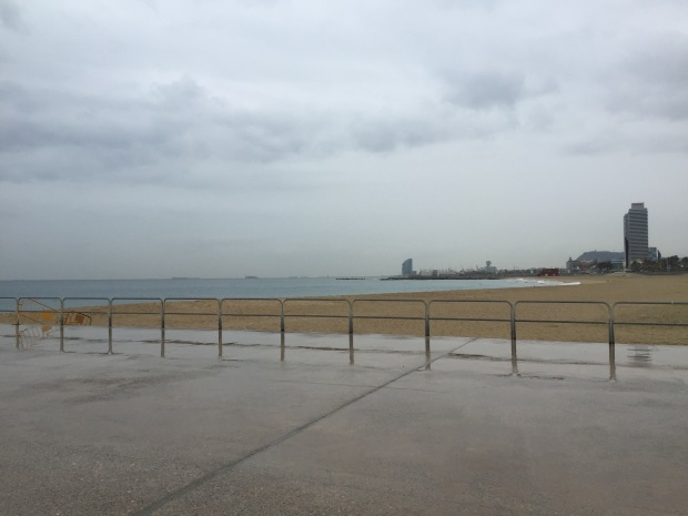 Drizzly run