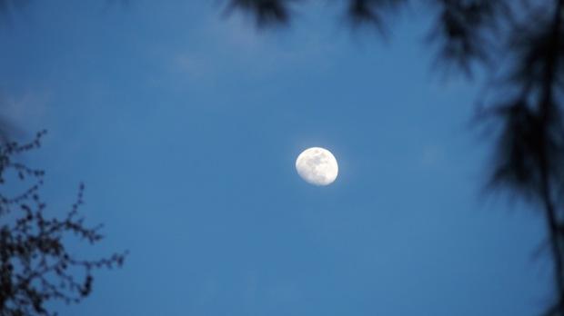 Winters last moon